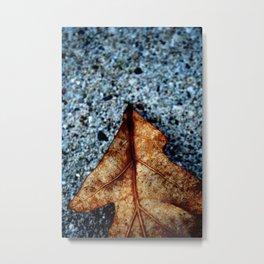 One Leaf Metal Print