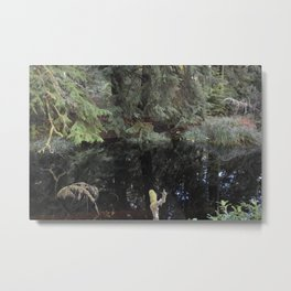 Rain forest Reflections Metal Print