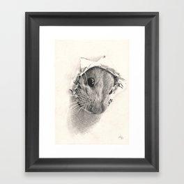 Pickaboo! Framed Art Print