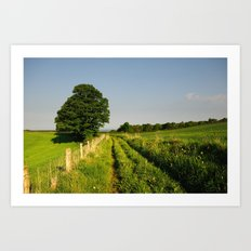 Roseberry Walks Art Print