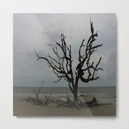 Ghost Tree Beach Metal Print