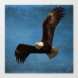 blue eagle print Canvas Print