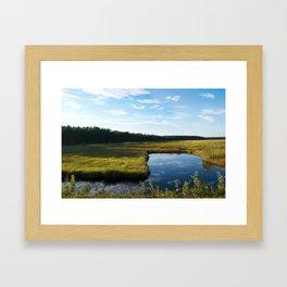 Alligator River National Wildlife Refuge Outer Banks NC OBX  Framed Art Print