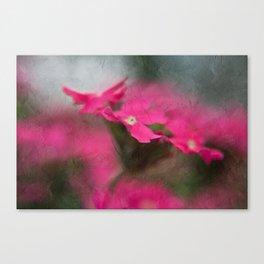 Seeing Pink Canvas Print
