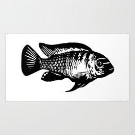 Mbuna Cichlid Art Print