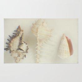 Shell trio Rug