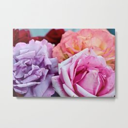 The Happiness of Roses Metal Print