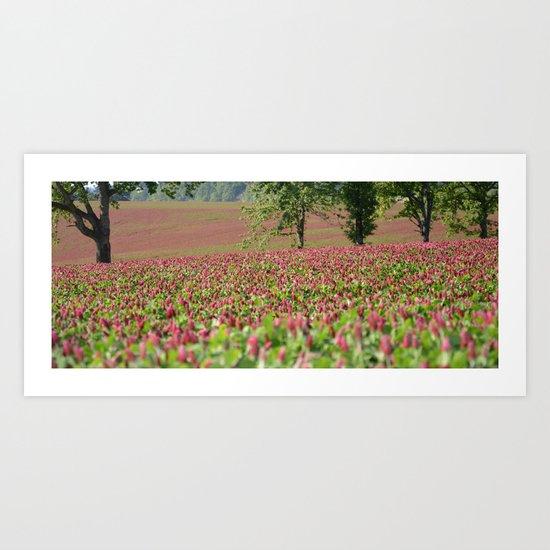 Clover Fields Art Print
