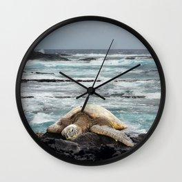Hawaiian Honu - Sea Turtle Wall Clock