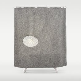 The Perfect Sand Dollar Shower Curtain