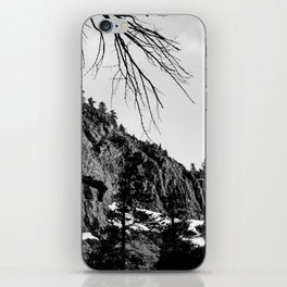 Mammoth Lakes 4 iPhone Skin