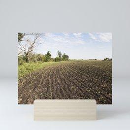 Corn Field 4 Mini Art Print