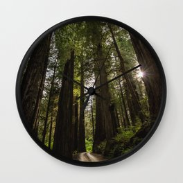 Redwoods Make Me Smile - Nature Photography Wall Clock