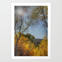 Fall and Cactus Art Print