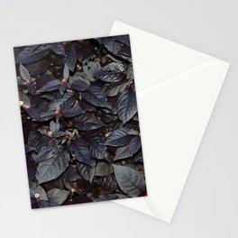 #19 Stationery Cards