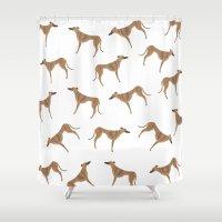 greyhound Shower Curtains featuring Tiger Greyhound by Maddy Vian