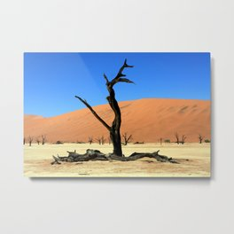 Dead Vlei Tree Metal Print