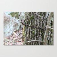 diablo Canvas Prints featuring Diablo by Adrienne Heinig