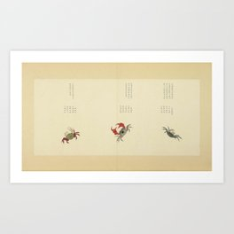 Ocean Creatures Marine Hand Drawing and Calligraphy of Qing Dynasty Art Print