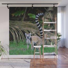 Madagascar's Exotic Ringtail Lemur Wall Mural