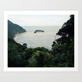 New Zealand Coast Art Print
