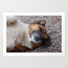 Guard Dog Art Print