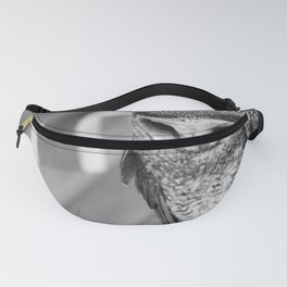 The Dreamy Watch of the Australian Owl Fanny Pack