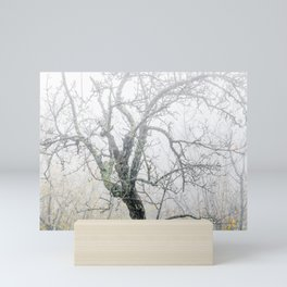 Naked tree surrounded by fog Mini Art Print