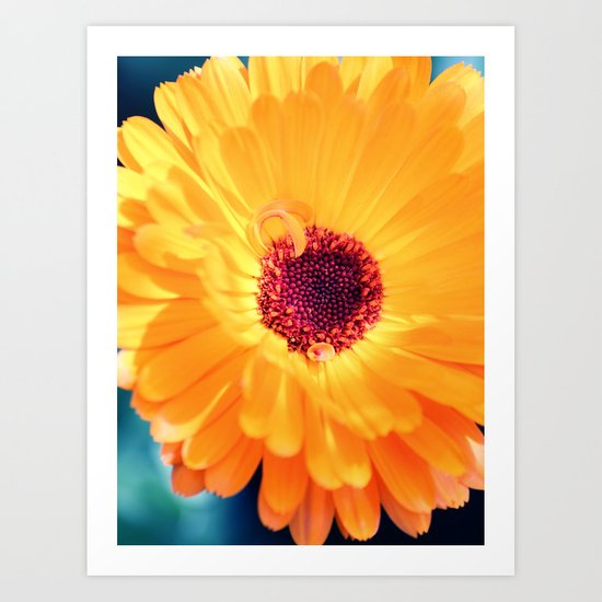 yellow flower heart °2 Art Print