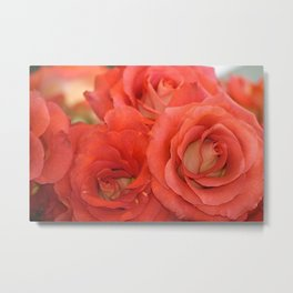 Market Roses at Pike Place Seattle Metal Print