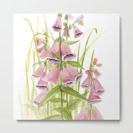 Pink Foxglove Botanical Garden Flower Metal Print