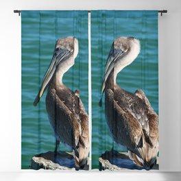 Pelican On A Pole Blackout Curtain