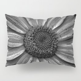 Darkened Daisy Pillow Sham