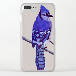 Blue Jay Bird Clear iPhone Case