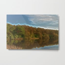 Reflections... Metal Print