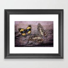 Butterflies Vintage Framed Art Print