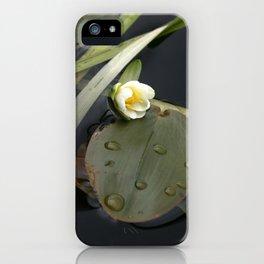 Zen Water Lily iPhone Case