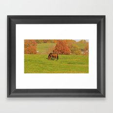 Horse Pasture Framed Art Print