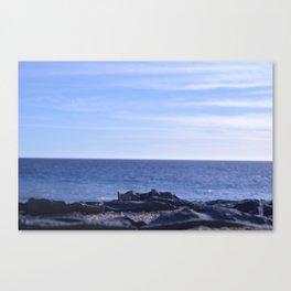 sea rocks. Canvas Print