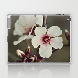 Almond Blossoms on a Budding Branch Laptop & iPad Skin