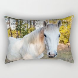 """Apache"" The Worrier Rectangular Pillow"