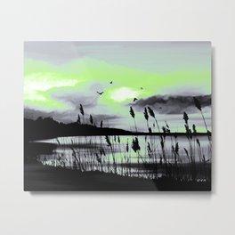 Agender Pride Marsh Lake Landscape Metal Print
