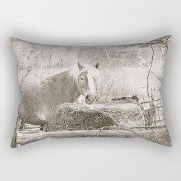 Farm Horse & Friends Rectangular Pillow