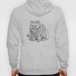 Yes it is a real cat! Hoody
