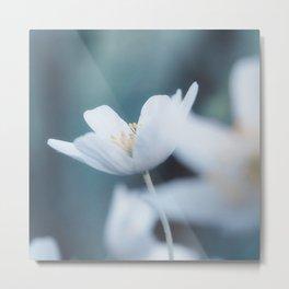 Windflower Metal Print
