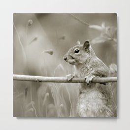 just watching the world passing by Metal Print