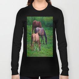 Grazing Horses Long Sleeve T-shirt