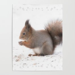 Squirrel And Lunch Pause Winter Scene #decor #society6 #buyart Poster