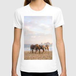 Horses on the beach T-shirt