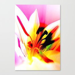 Abstract Of The Lily Canvas Print